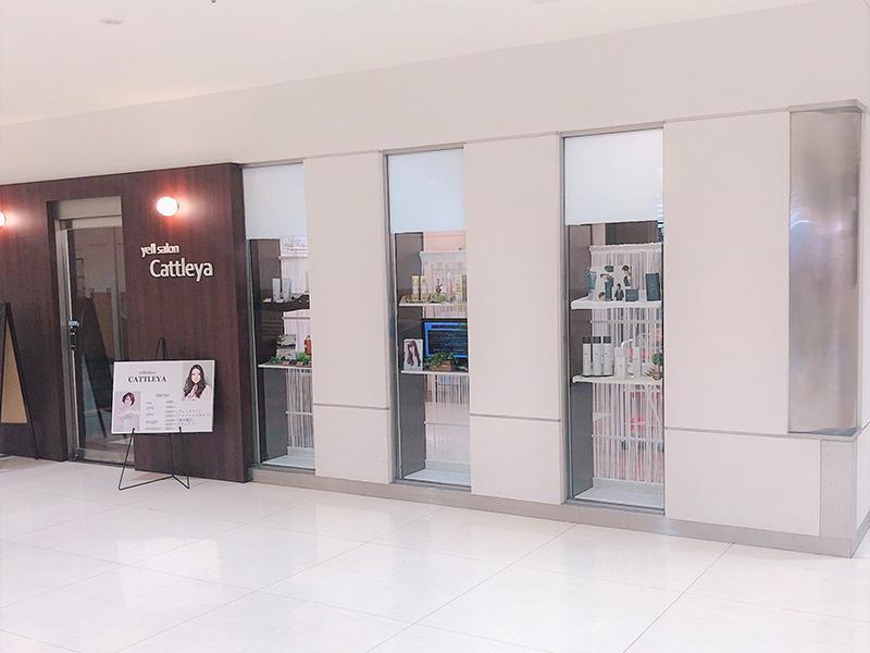 yellsalonCATTLEYA城陽店☆アシスタント募集
