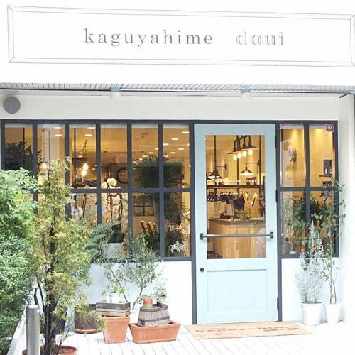 京都美容商事株式会社 kaguyahime