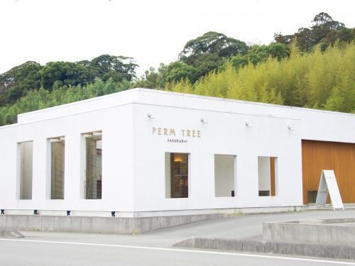 PERM TREE桜台店☆アシスタント募集